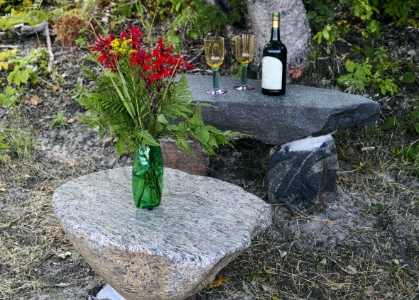 Red flowers and a wine bottle on the rocks