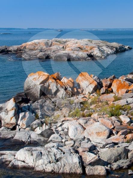 Red moss on rocks in Georgian Bay / Great Lakes