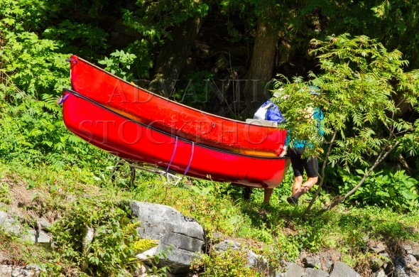 Carrying two canoes on a wooded portage