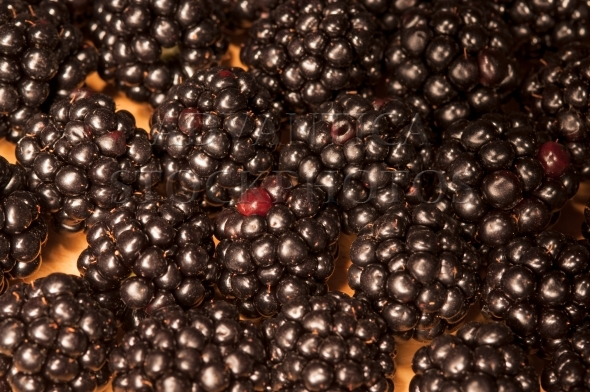 Blackberries on a wooden board