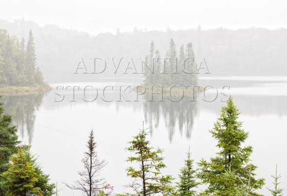 Small island with trees in the fog