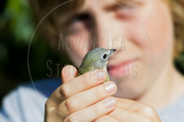 Boy holding a small bird for banding