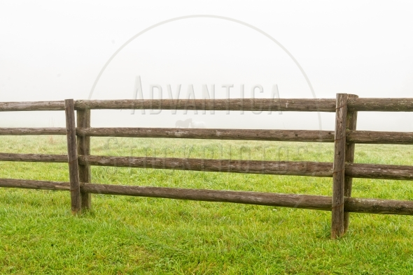 Horse corral in the morning mist