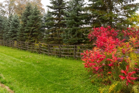 Old split rail fence on an autumn day