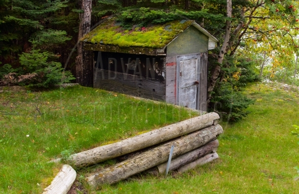 Old wooden shed with green moss on the roof