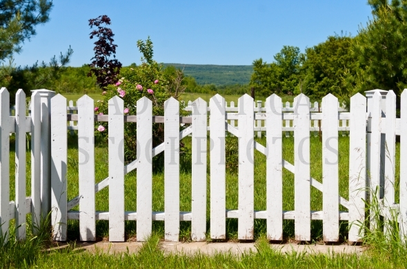 White picket fence and a garden gate